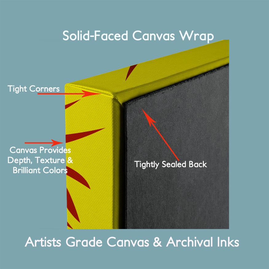 Canvas Wrap Side and Back View With Product Features